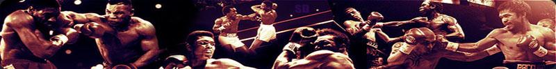 Pro Boxing @ BX